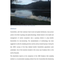 http://download.otagogeology.org.nz/temp/Abstracts/2016Nyhof.pdf